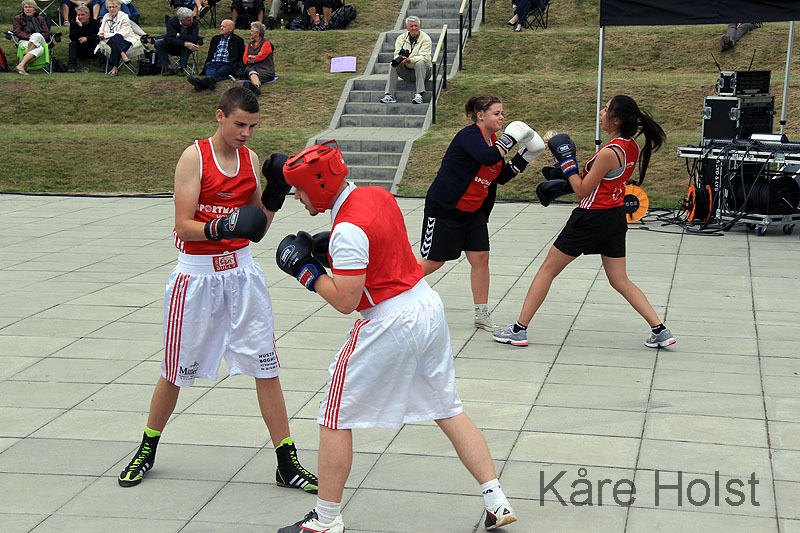 boksere-4