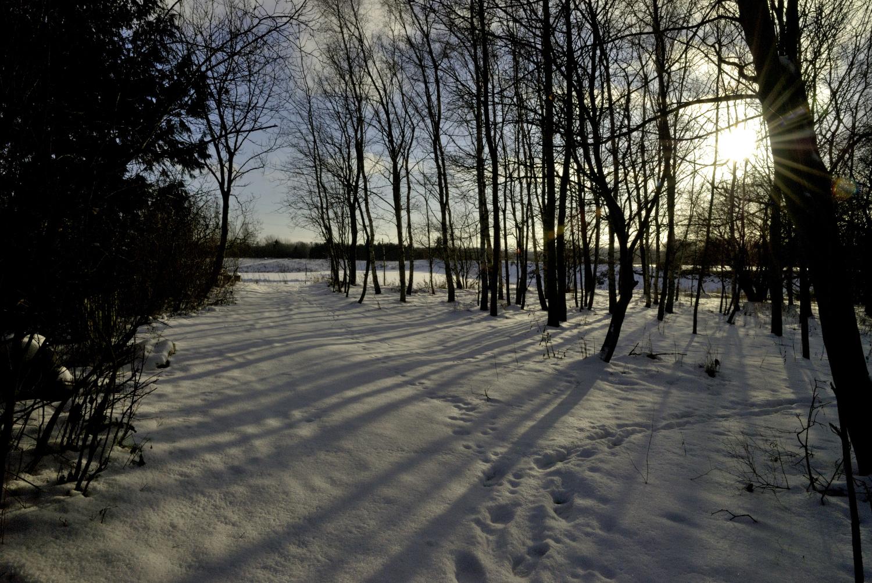 Vinterstemning_1_plads